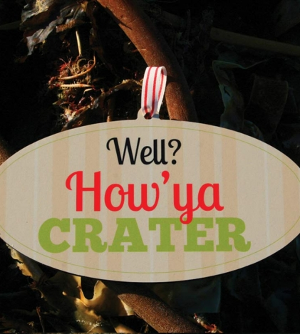Well ? How Ya Crater Wooden Sign
